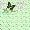 butterflystars**|AYL|