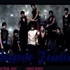 15.  No Other than Super Junior