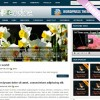 Endine wordpress theme