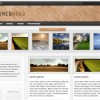 Brushed Wood WordPress Magazine Theme