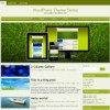 WordPress Template Mobile Compatible / New
